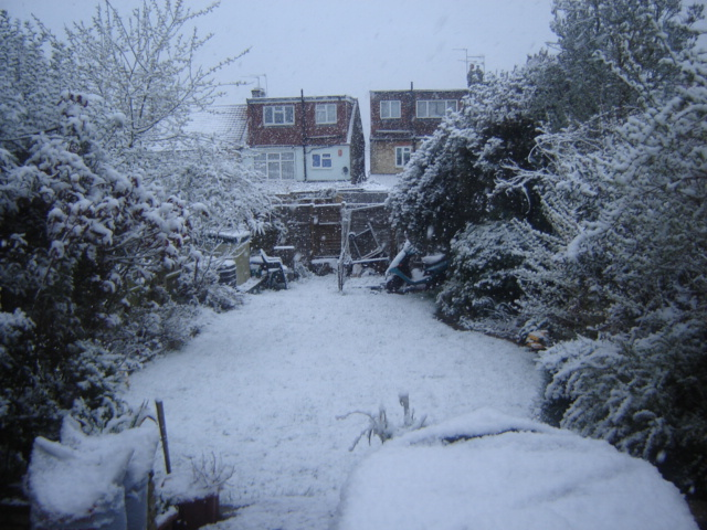 The Home Heating Shop - using portable Heaters My Garden xmas 2009 when my gas supply was disrupted