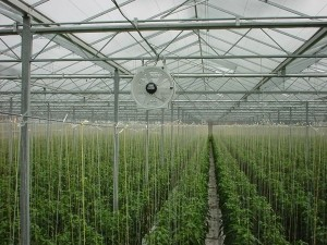 air conditioner a greenhouse fan